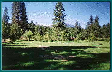 Putting green and picnic area